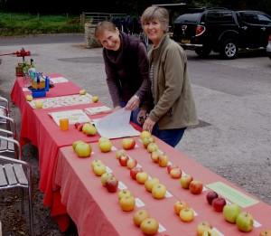 Identifying apples